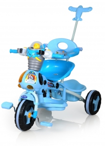 21104 Family Tricycle